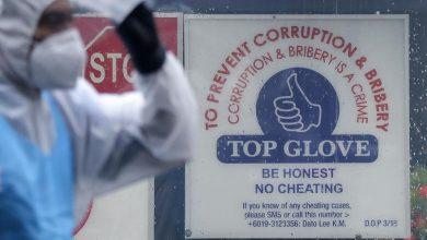 Photo of Kluster Teratai: 19 kertas siasatan dibuka terhadap Top Glove